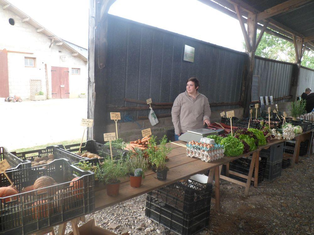 Exploitation agricole à Pierrecourt